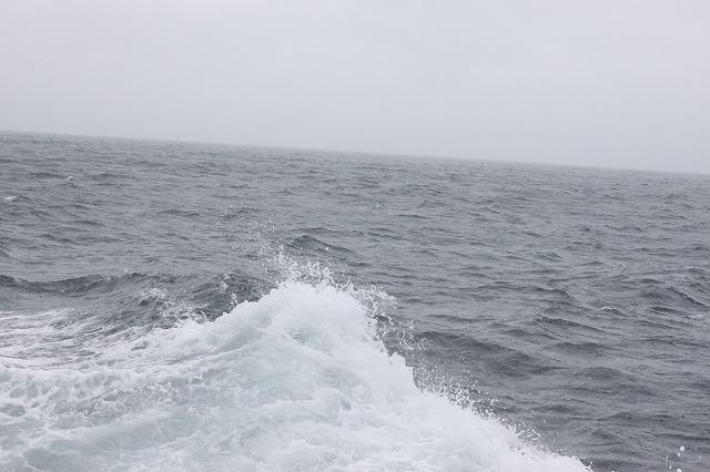 田代島へ向かう海の画像だよ