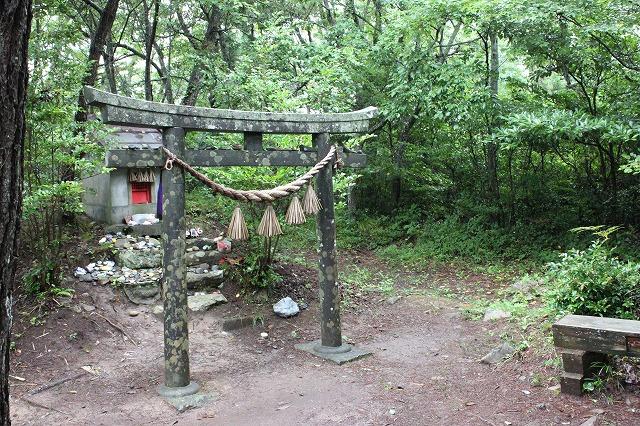 田代島の猫神社の画像だよ