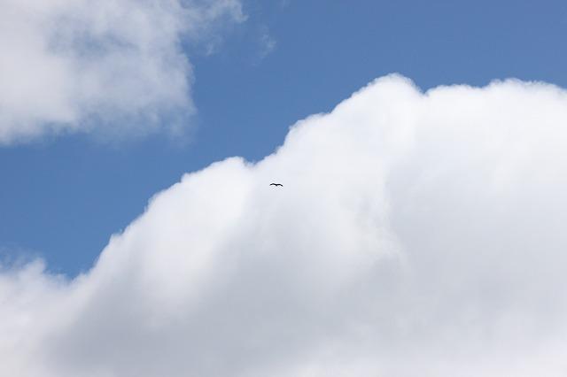 田代島の青空画像だよ