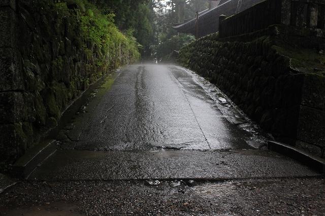 日光の雨と小道。写真