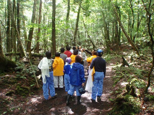 そうだ、富士樹海で洞窟探検しよう-洞窟まで