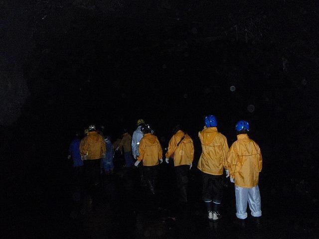 そうだ、富士樹海で洞窟探検しよう-ずんずん