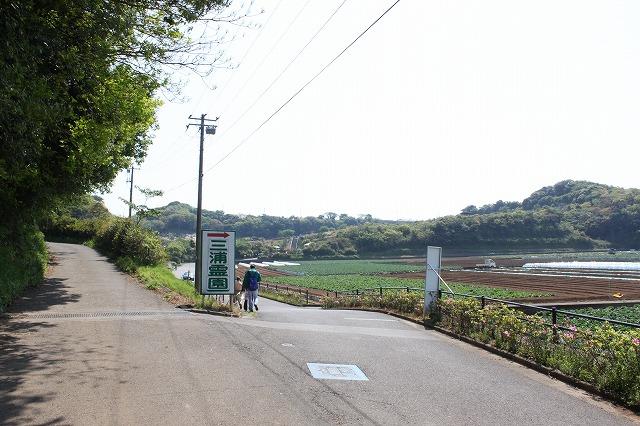 三浦海岸、「XJAPAN hideのお墓参り」道道道