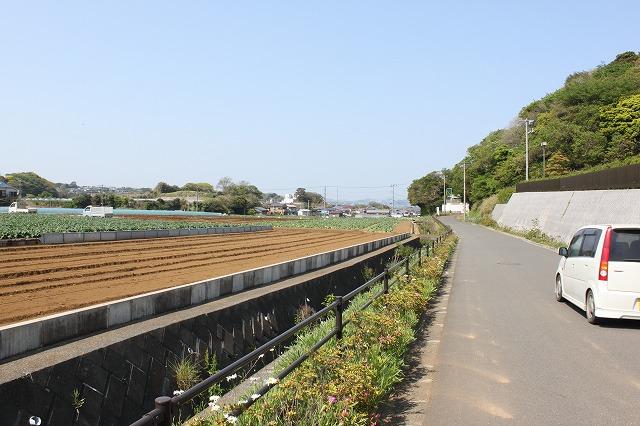 三浦海岸、「XJAPAN hideのお墓参り」のどかな道