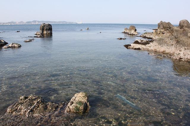三浦海岸、「XJAPAN hideのお墓参り」なかなかきれい