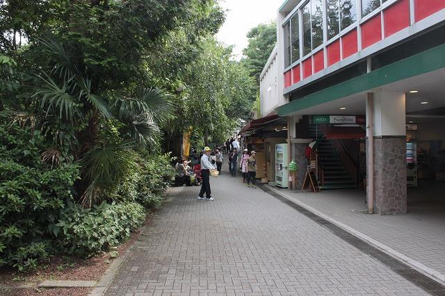登山者数世界一、「高尾山」の自然研究路6号路を歩いてきた。_0100.jpg