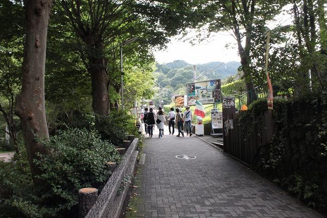 登山者数世界一、「高尾山」の自然研究路6号路を歩いてきた。_0105.jpg