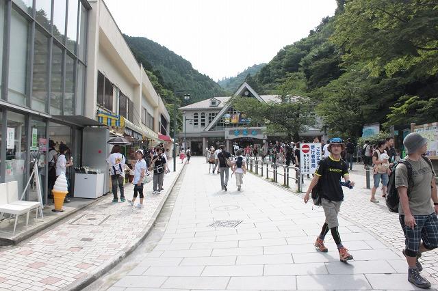 登山者数世界一、「高尾山」の自然研究路6号路を歩いてきた。_0125.jpg