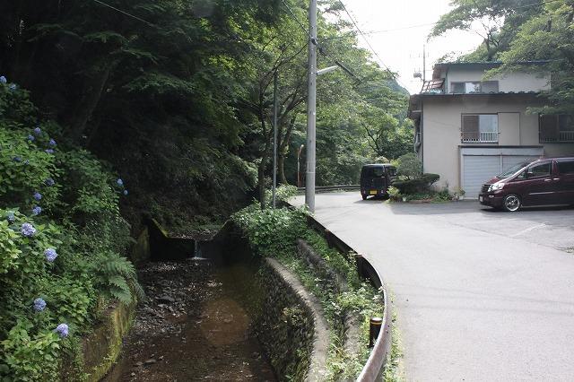 登山者数世界一、「高尾山」の自然研究路6号路を歩いてきた。_0139.jpg