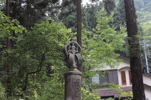 登山者数世界一、「高尾山」の自然研究路6号路を歩いてきた。_0160.jpg