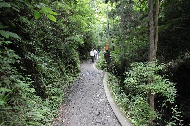 登山者数世界一、「高尾山」の自然研究路6号路を歩いてきた。_0174.jpg