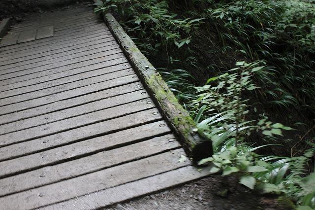 登山者数世界一、「高尾山」の自然研究路6号路を歩いてきた。_0214.jpg