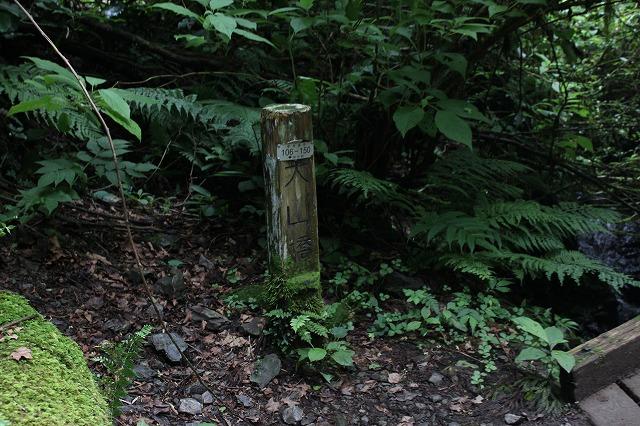 登山者数世界一、「高尾山」の自然研究路6号路を歩いてきた。_0297.jpg