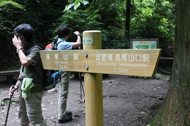登山者数世界一、「高尾山」の自然研究路6号路を歩いてきた。_0299.jpg