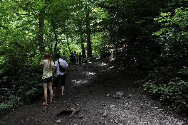 登山者数世界一、「高尾山」の自然研究路6号路を歩いてきた。_0313.jpg