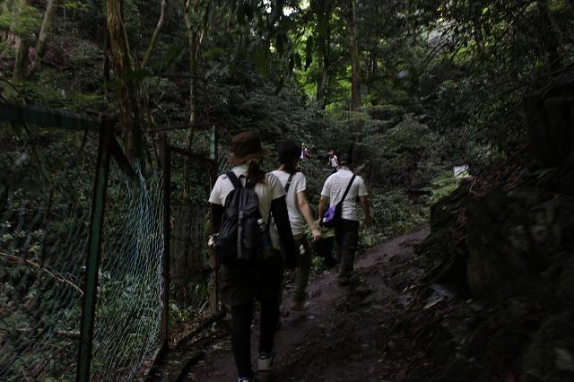 登山者数世界一、「高尾山」の自然研究路6号路を歩いてきた。_0345.jpg