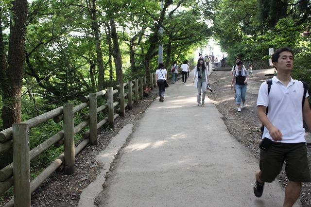 登山者数世界一、「高尾山」の自然研究路6号路を歩いてきた。_0412.jpg