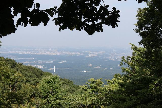 登山者数世界一、「高尾山」の自然研究路6号路を歩いてきた。_0437.jpg