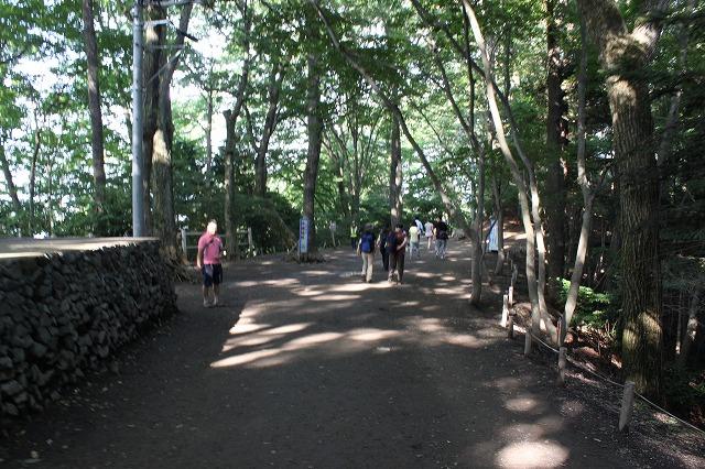 登山者数世界一、「高尾山」の自然研究路6号路を歩いてきた。_0486.jpg