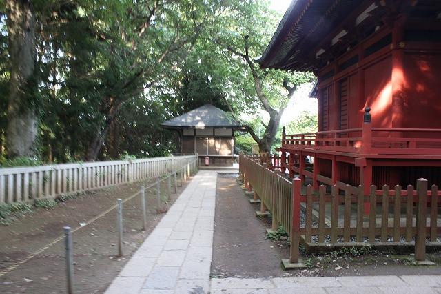 登山者数世界一、「高尾山」の自然研究路6号路を歩いてきた。_0493.jpg