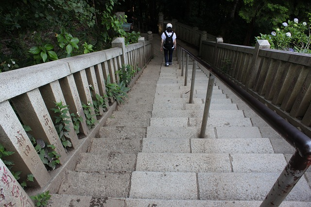 登山者数世界一、「高尾山」の自然研究路6号路を歩いてきた。_0504.jpg
