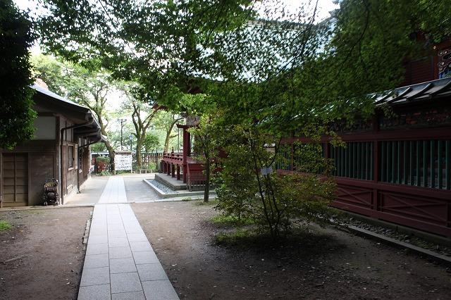 登山者数世界一、「高尾山」の自然研究路6号路を歩いてきた。_0511.jpg
