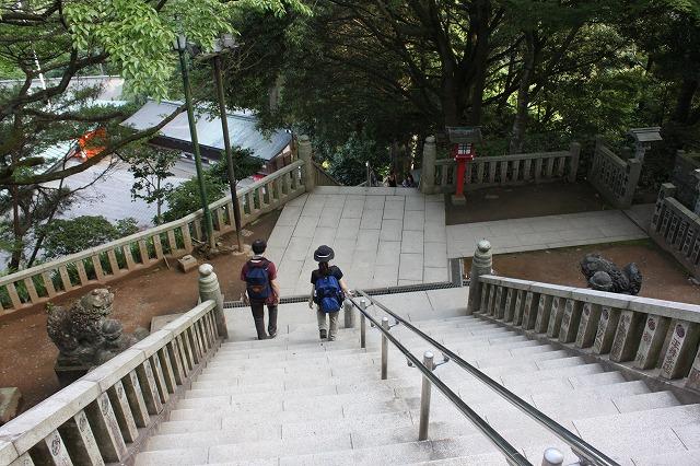 登山者数世界一、「高尾山」の自然研究路6号路を歩いてきた。_0527.jpg