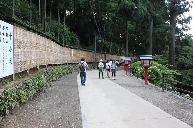 登山者数世界一、「高尾山」の自然研究路6号路を歩いてきた。_0556.jpg