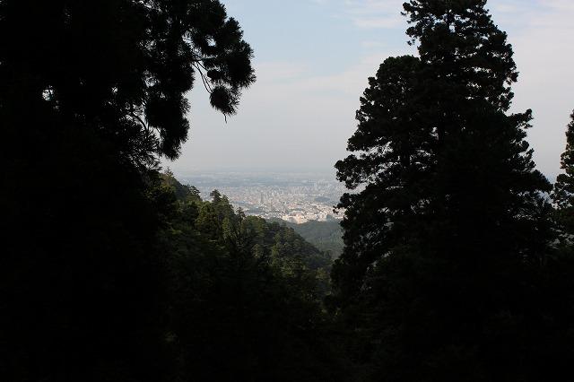 登山者数世界一、「高尾山」の自然研究路6号路を歩いてきた。_0558.jpg