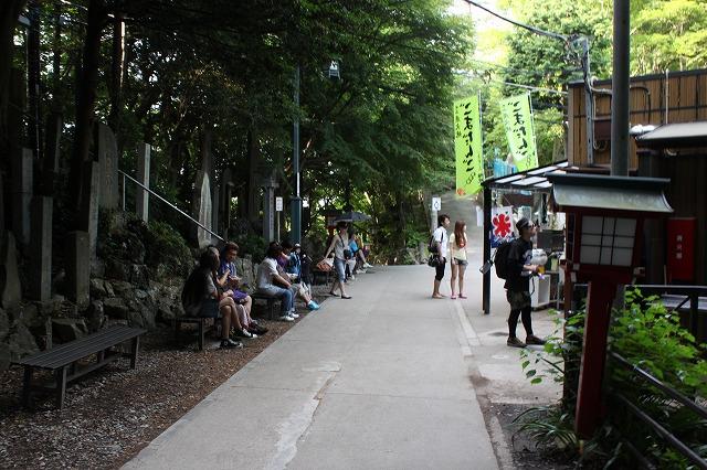 登山者数世界一、「高尾山」の自然研究路6号路を歩いてきた。_0562.jpg