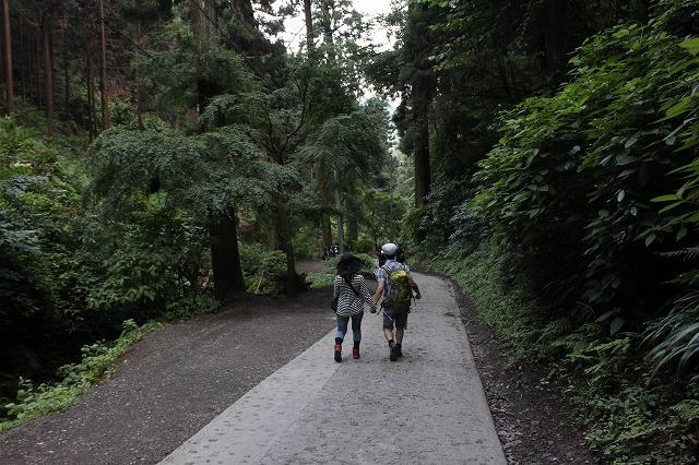 登山者数世界一、「高尾山」の自然研究路6号路を歩いてきた。_0617.jpg
